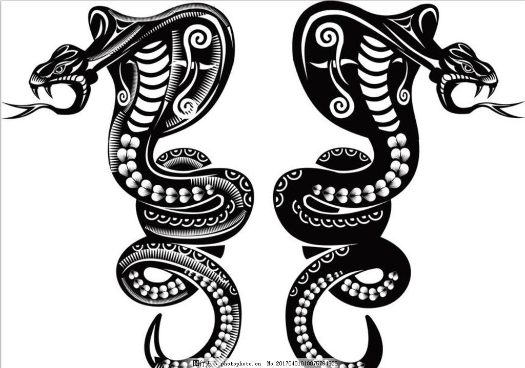 动物 蛇 眼镜蛇 矢量图 两条蛇 野生世界 蛇纹 矢量素材 广告设计