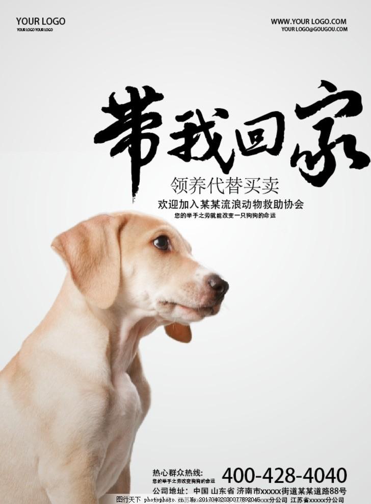 宠物领养 公益广告 公益海报 公益活动 流浪动物 流浪宠物 救助