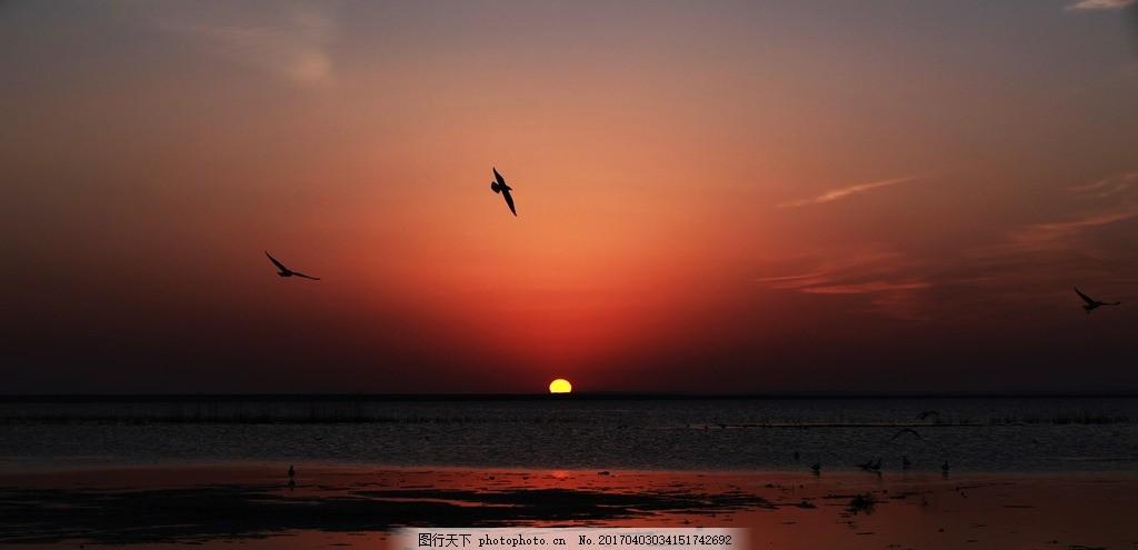 日出居延海 飞鸟 剪影 朝霞 湖泊 内蒙古 太阳 旅行风光 摄影