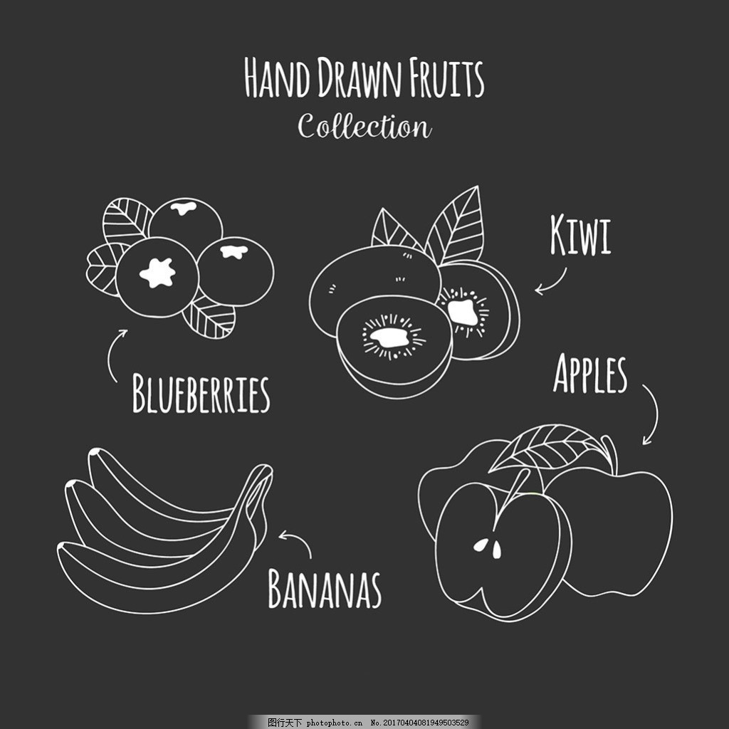 手绘线条风格水果插图