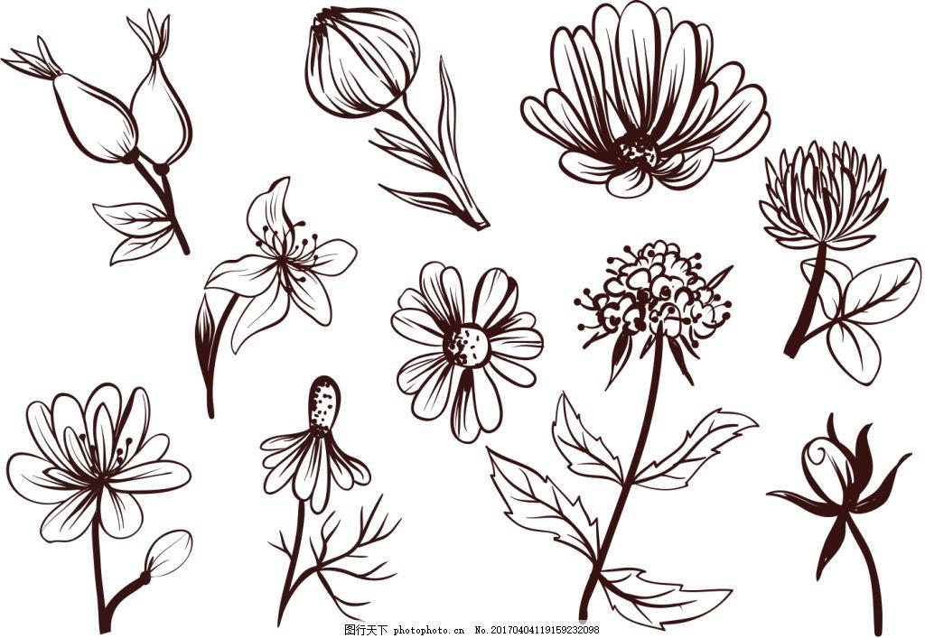 手绘花卉素材 花卉花朵 手绘植物 手绘花朵 矢量素材