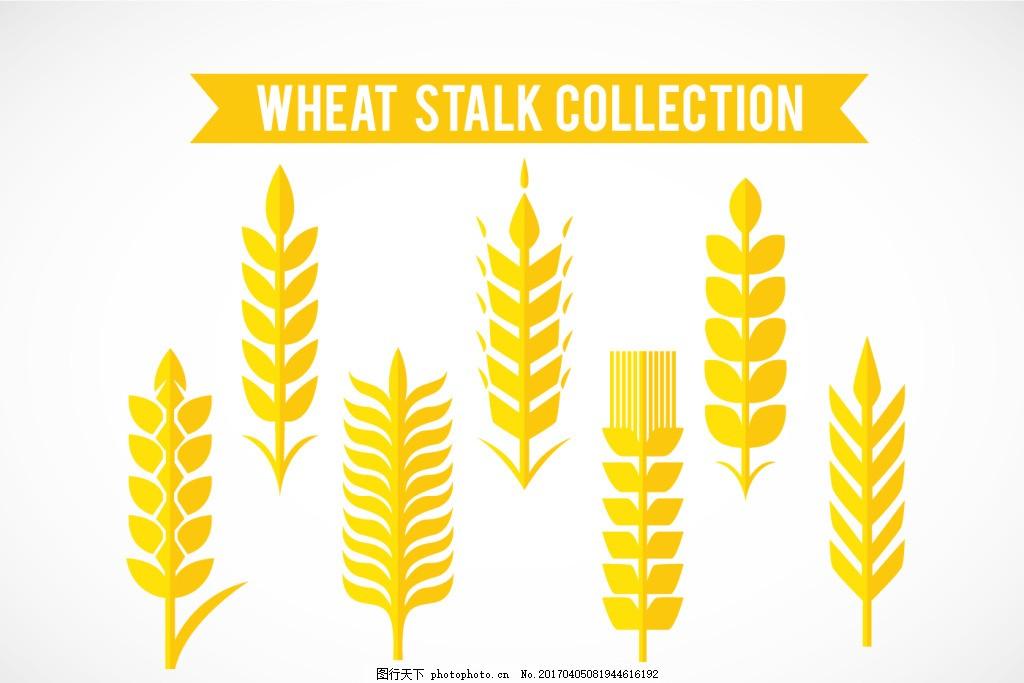 手绘麦穗素材 麦穗图标 麦子 矢量素材 手绘植物 手绘麦子 稻田