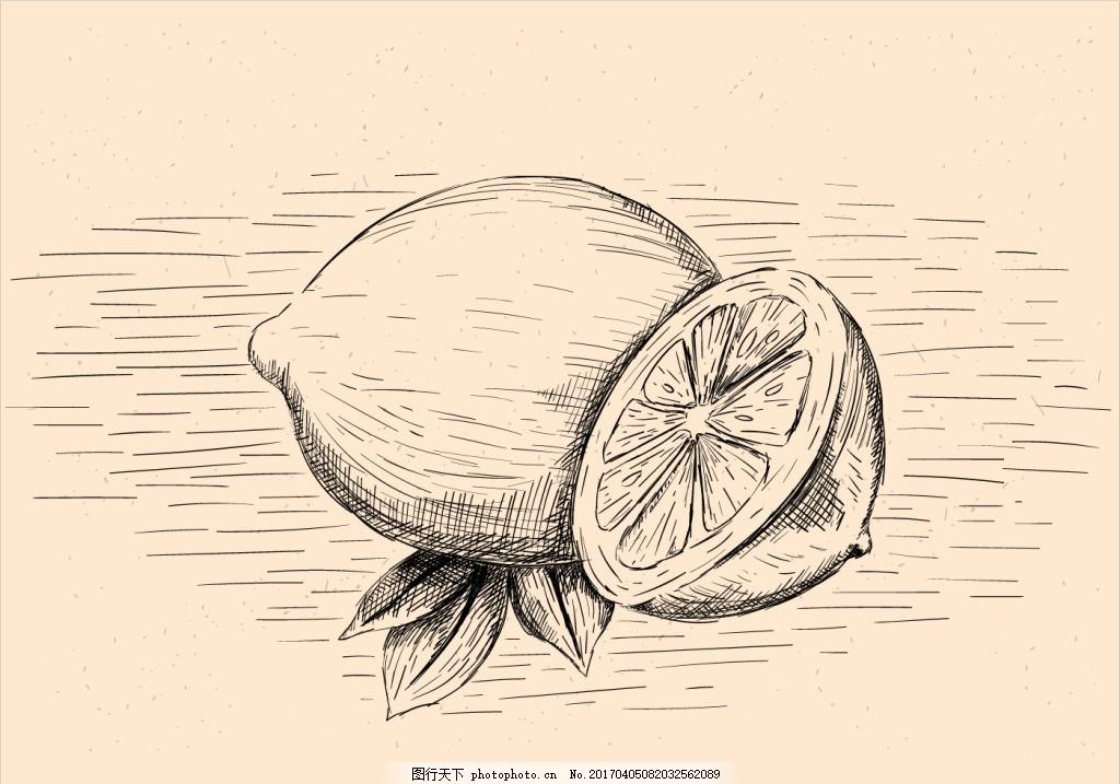 怀旧手绘柠檬插画 手绘水果 水果素材 可爱水果 矢量素材 手绘植物