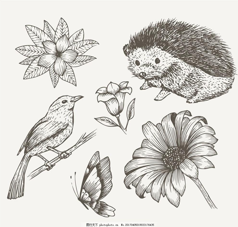 6款手绘动植物设计矢量素材 动物 鸟 植物 花卉 刺猬 手绘 树枝 蝴蝶