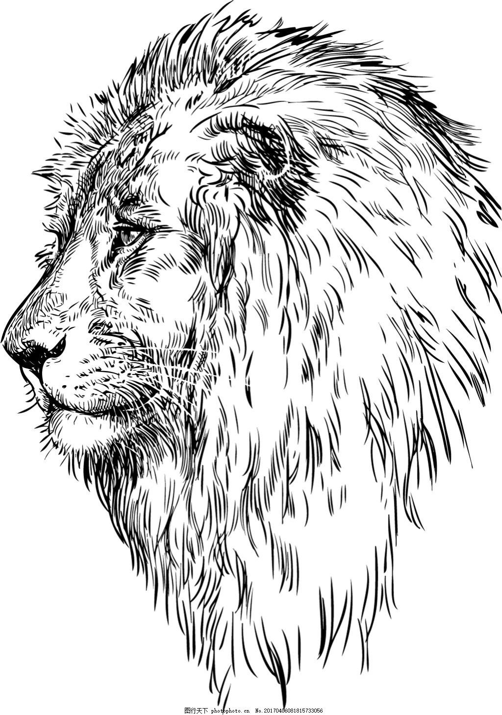 手绘狮子矢量素材
