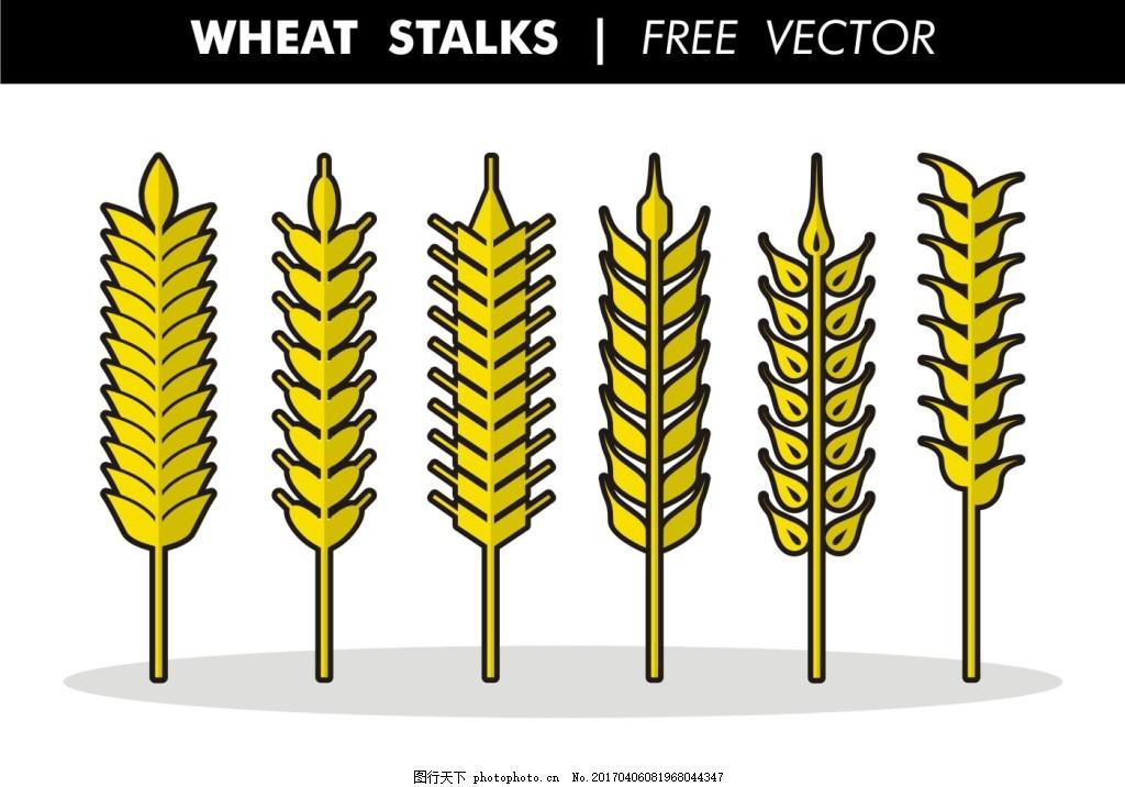 手绘矢量麦子