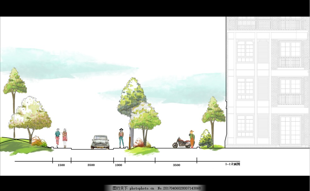 道路景观立面图 绿化 标注图 手绘 简约 清新
