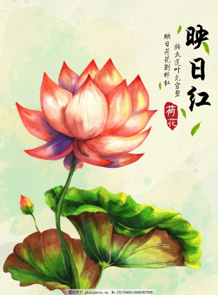 手绘荷花 水墨画 水彩画 国画 中国风 复古水墨画 水墨荷花 水彩荷花
