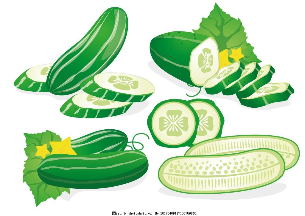 手绘黄瓜矢量素材 水果 手绘蔬菜 扁平化蔬菜 食物 美食 手绘食物