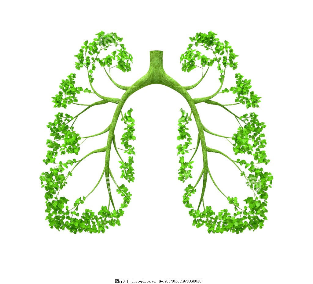 绿色环保树叶树肺装饰图案创意设计元素素材图片
