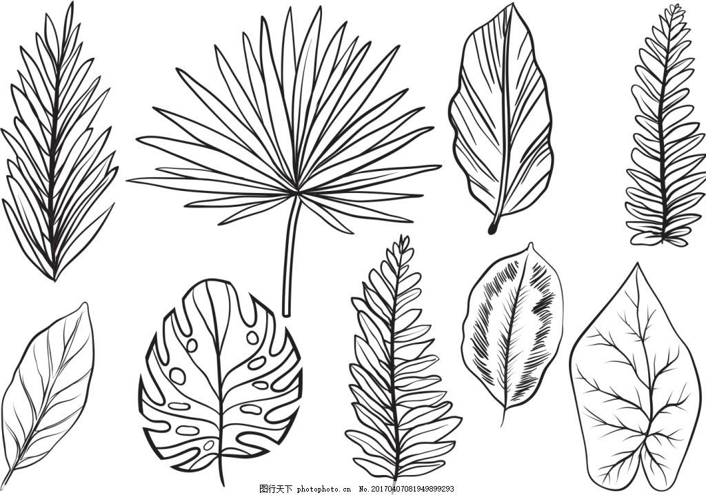 手绘线性树叶矢量素材 手绘树叶 叶子 手绘插画 手绘植物