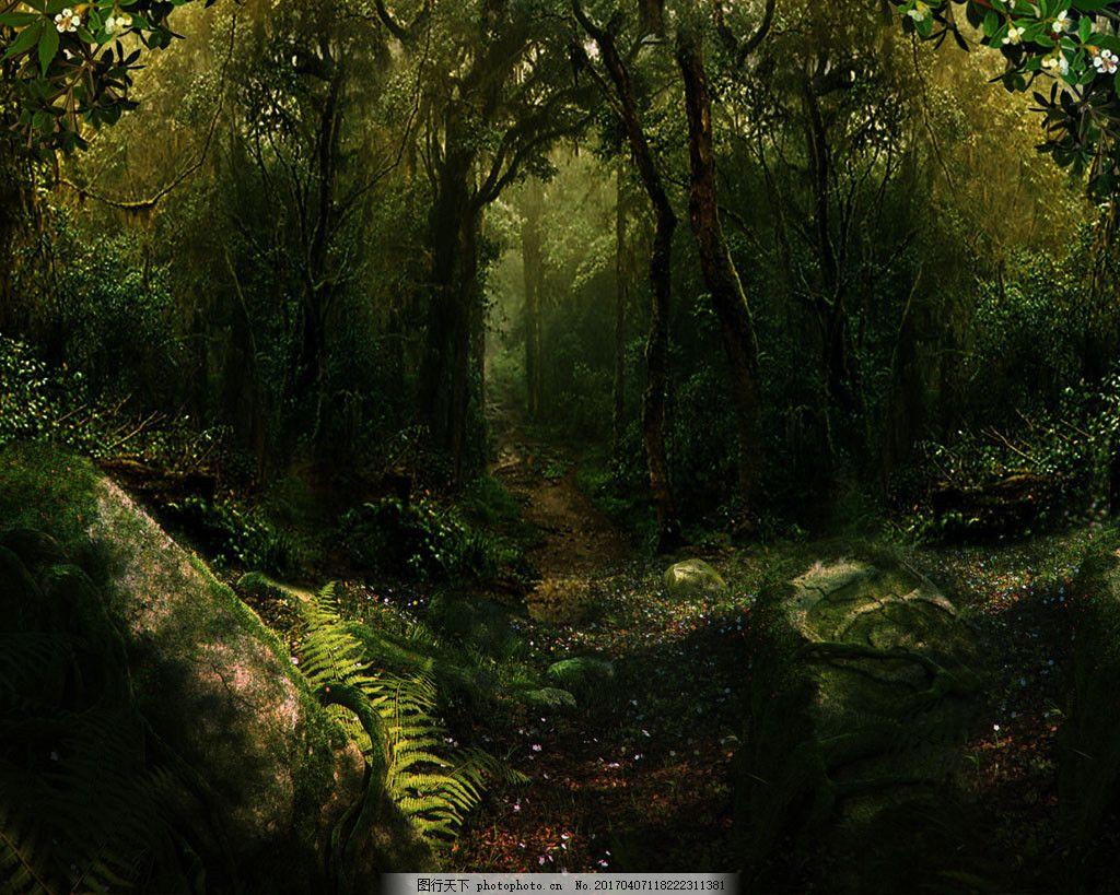 小路树林背景图片