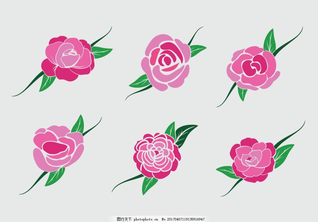 扁平化矢量玫瑰 手绘花卉 手绘植物 花卉花朵 玫瑰 玫瑰花 花束 花朵