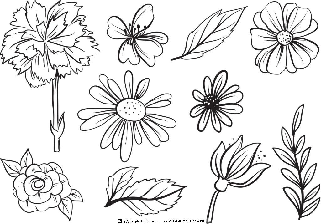 手绘线性花卉花朵