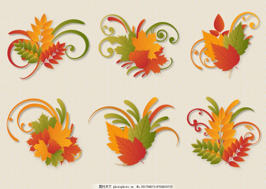 秋季手绘树叶插画