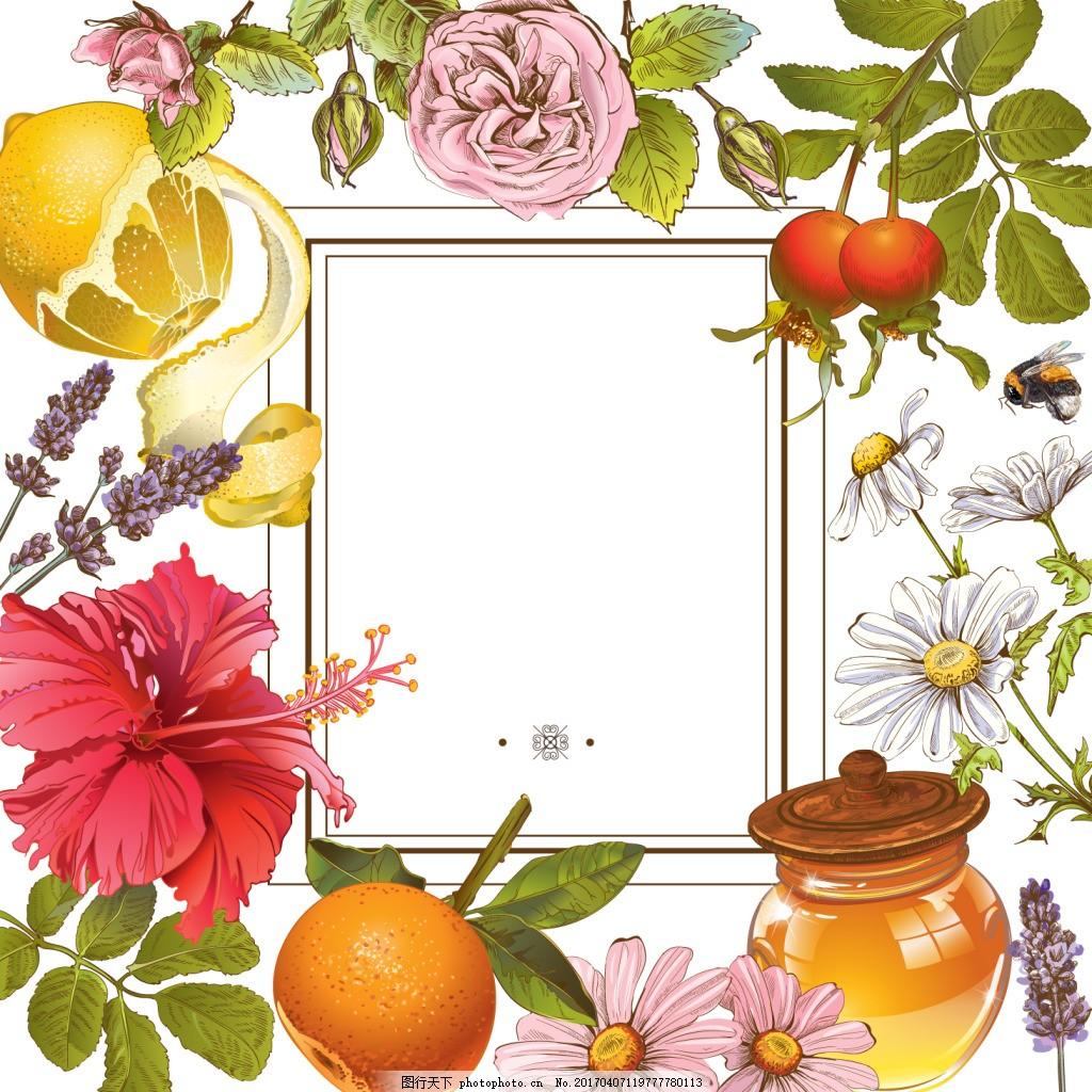 各种手绘 矢量 蜂蜜罐 柠檬 各种花 橙子 粉菊花 白菊花 薰衣草