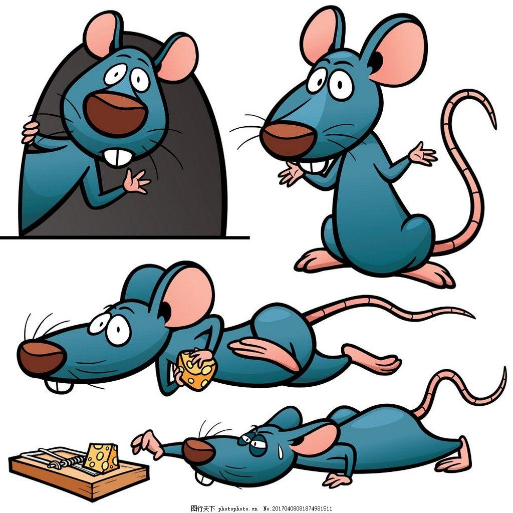 吃奶酪的老鼠 动物 矢量素材 矢量图 蓝色
