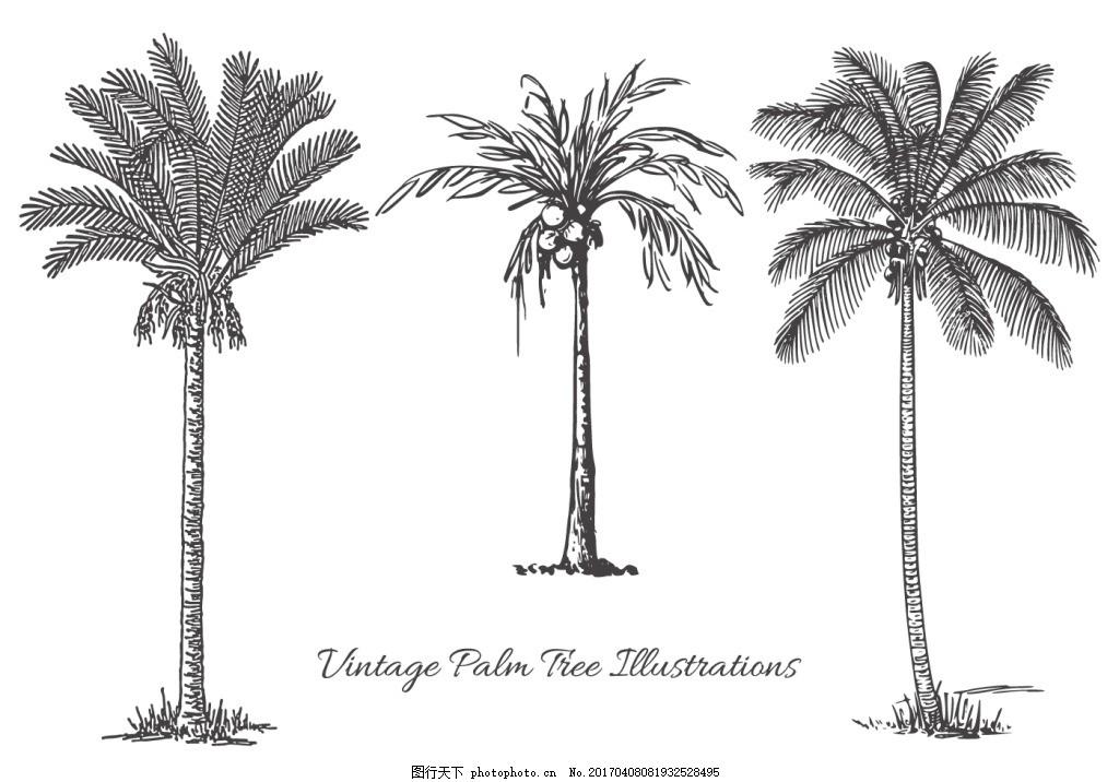 手绘棕榈树