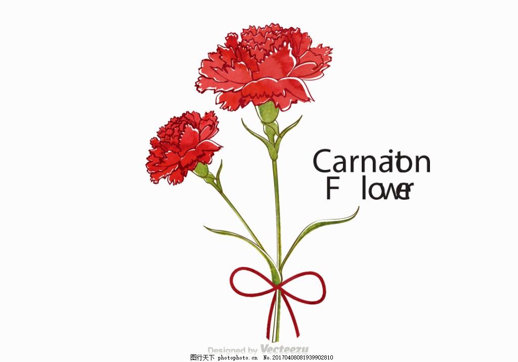 矢量素材 唯美 清新 手绘插画 手绘植物 花卉插画 康乃馨 水彩康乃馨