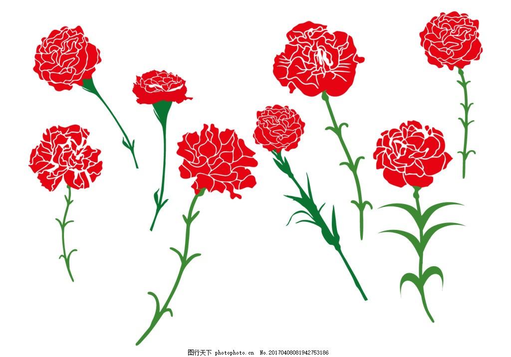 康乃馨矢量素材 手绘花卉 花卉花朵 植物 手绘植物 手绘康乃馨