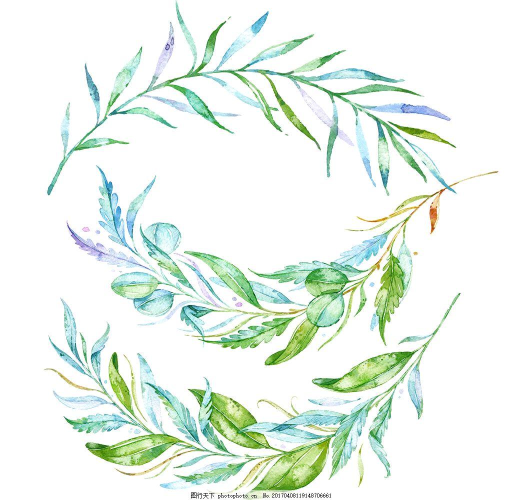 水彩花卉树叶 手绘花卉 花卉花朵 唯美花卉 水彩植物 植物素材