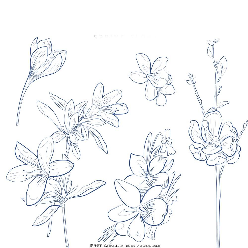 手绘花朵线条