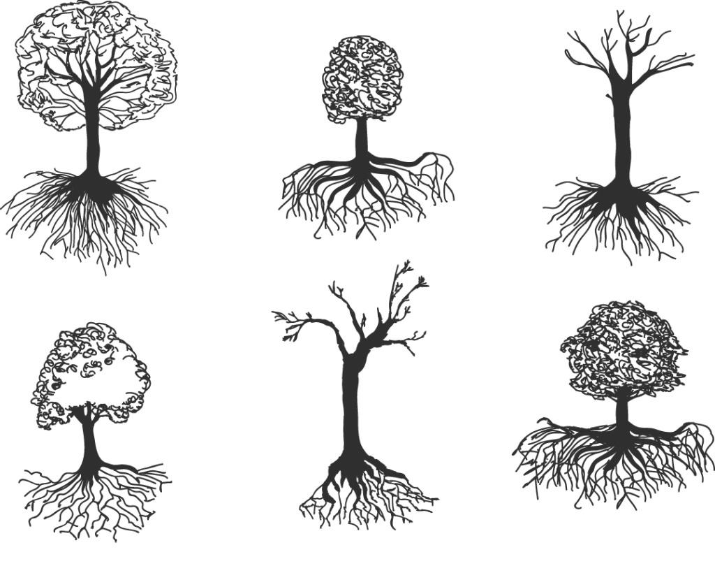 手绘素描树木