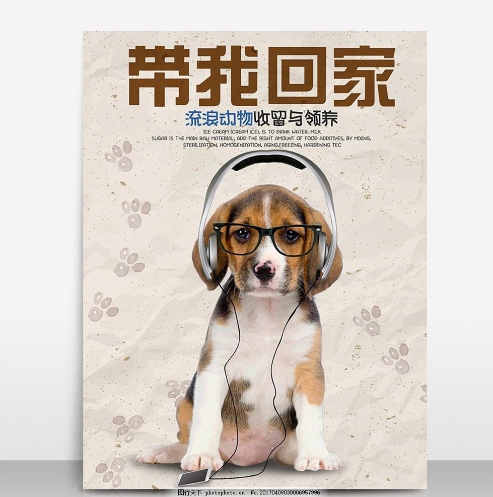 流浪动物领养宣传公益海报