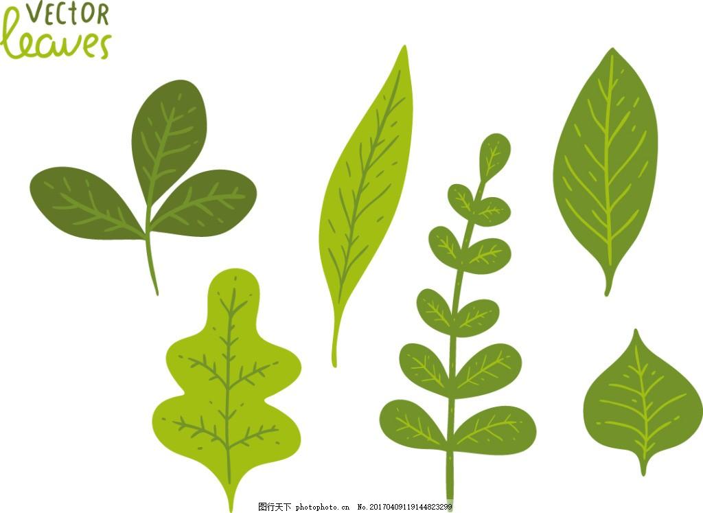 手绘树叶素材 手绘树叶 手绘叶子 矢量素材 树叶 叶子 手绘植物 扁平