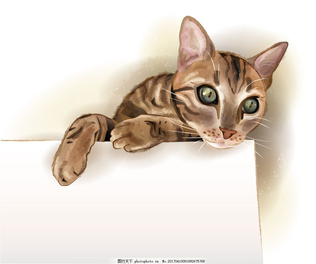 水彩手绘小猫咪