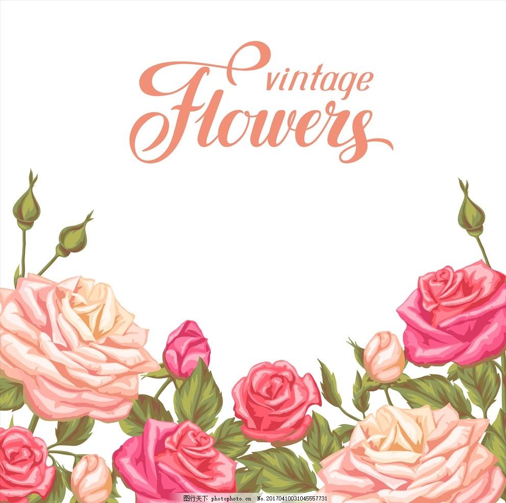 手绘玫瑰花