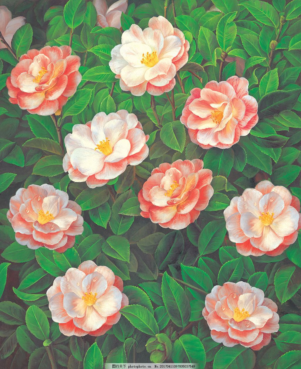 高清大幅茶花油画背景墙装饰画图片