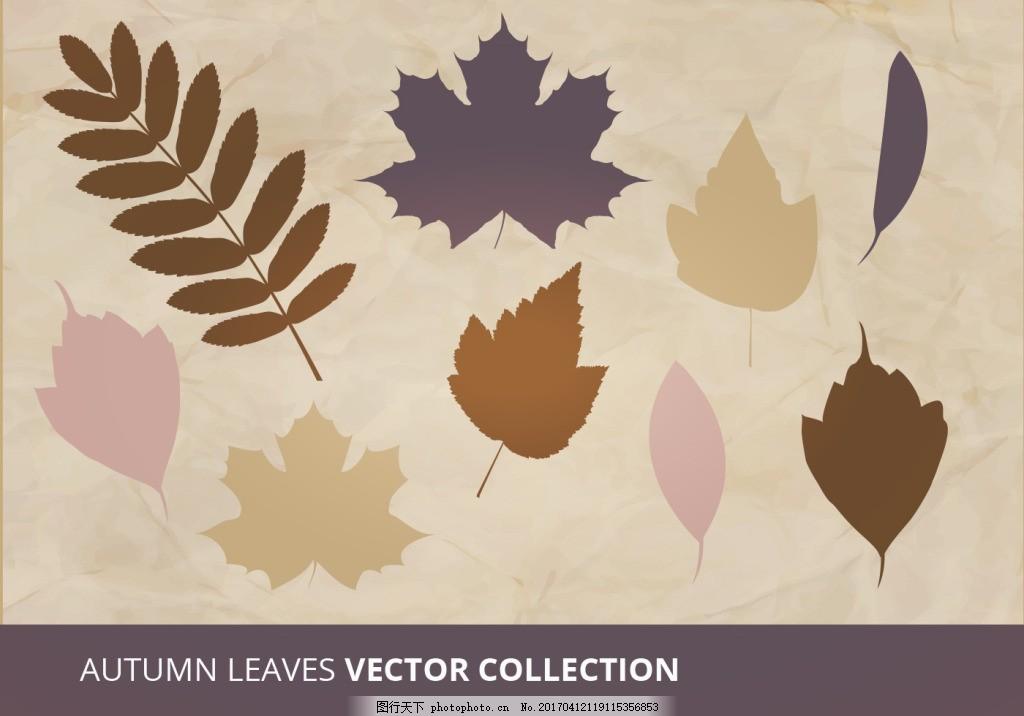扁平化树叶 手绘树叶 手绘叶子 矢量素材 手绘植物 扁平树叶 枫叶