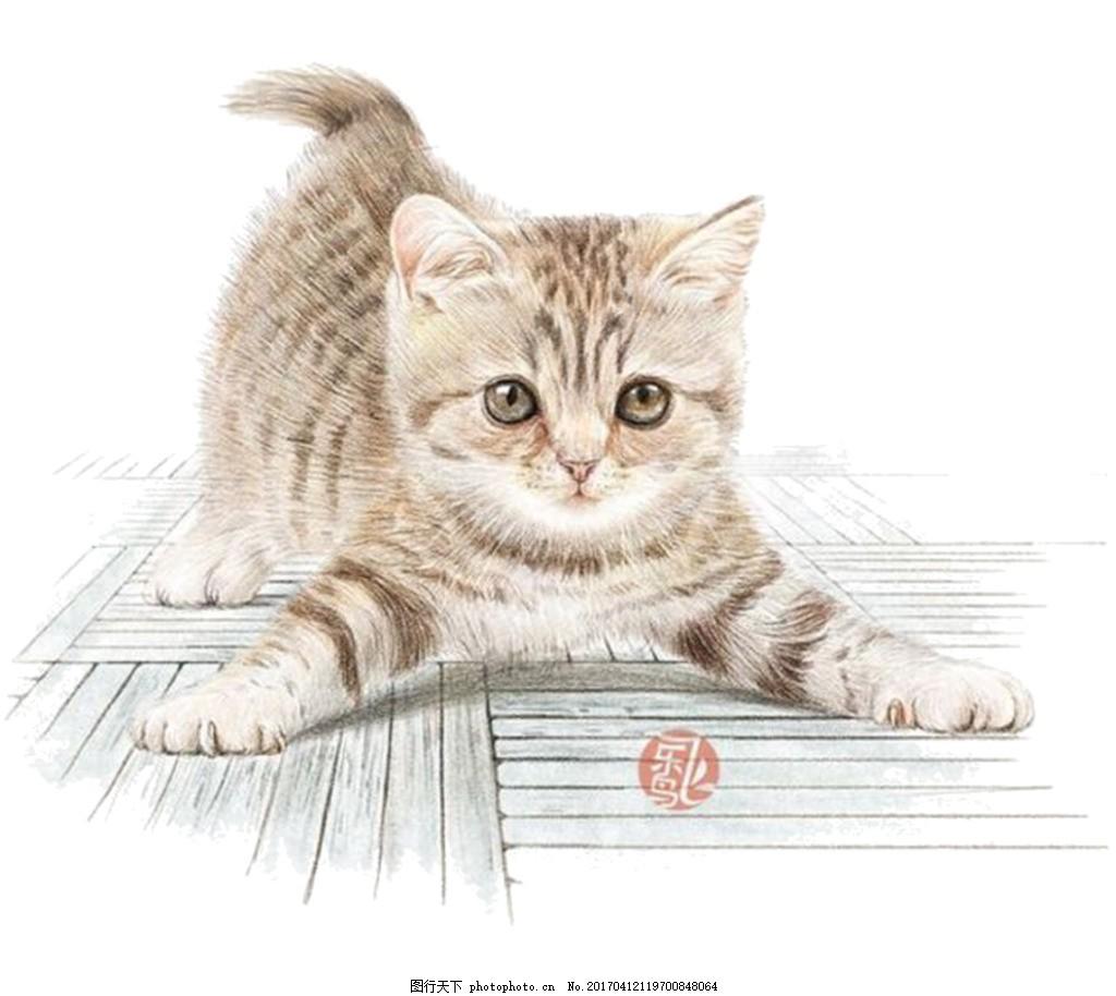 手绘小猫 jpg抠图psd psd图 棕色小猫 无背景