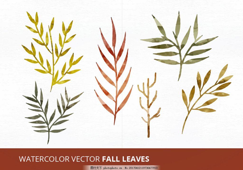 水彩秋天树叶 植物素材 手绘植物 植物 手绘树叶 手绘花卉 花卉花朵
