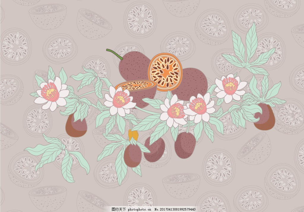 手绘怀旧小清新百香果插画 水果 手绘水果 矢量素材 扁平化水果 食物