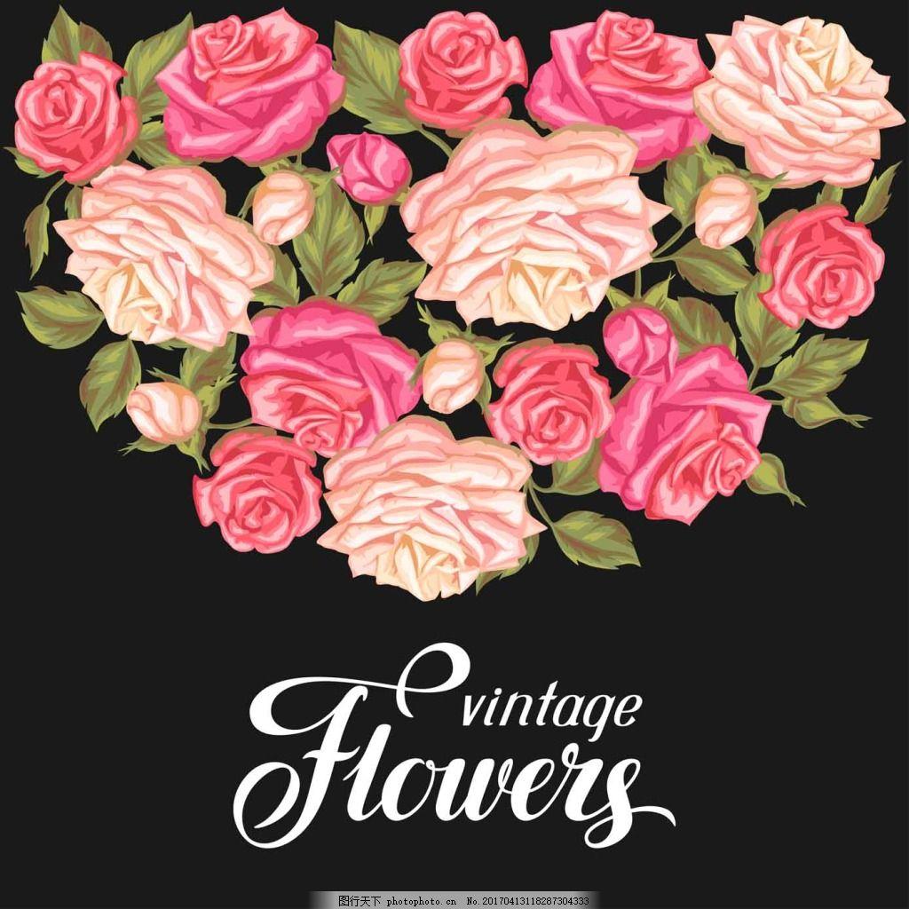 粉色玫瑰花 手绘 复古 植物