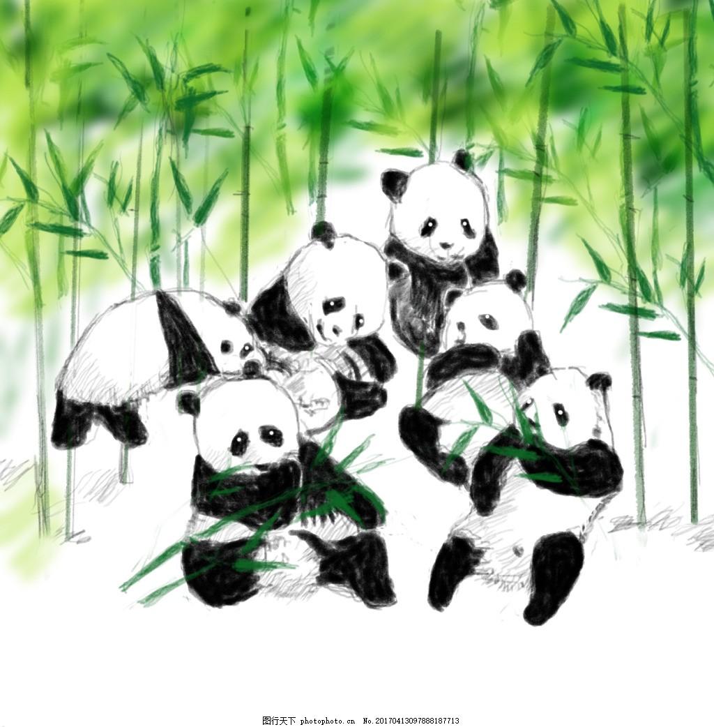 熊猫手绘 四川大熊猫