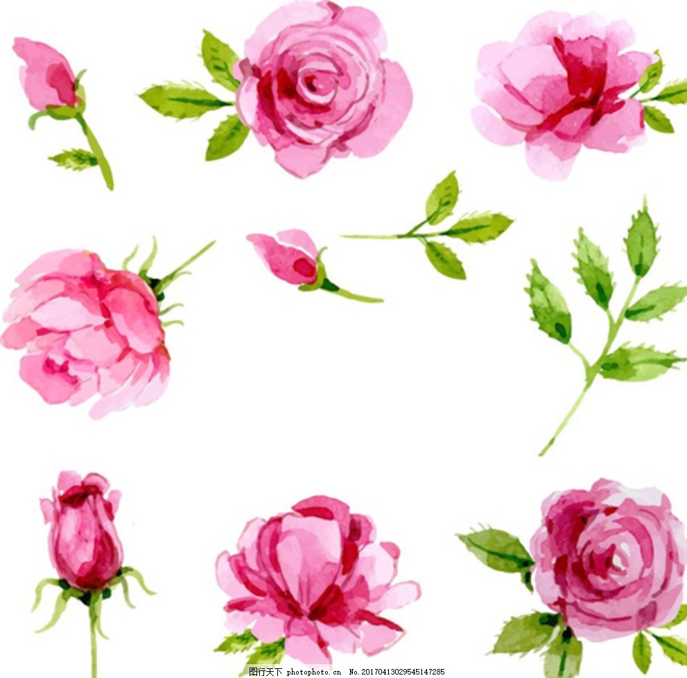 手绘水彩春季玫瑰元素