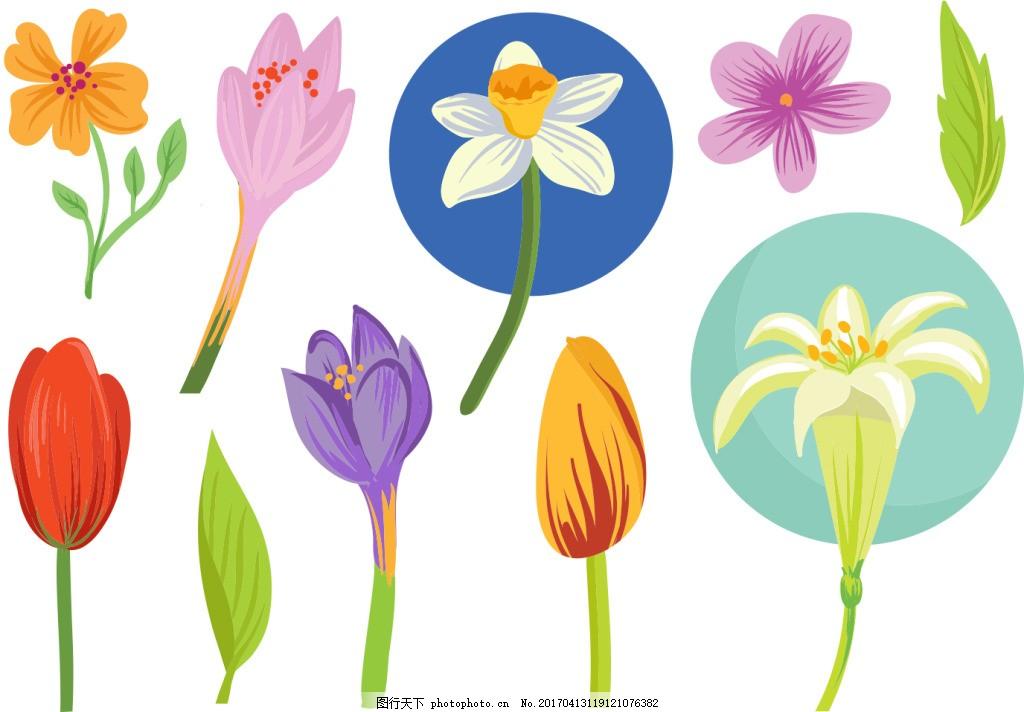 矢量手绘花卉花朵 唯美 手绘花朵 矢量素材 手绘植物 郁金香 百合花