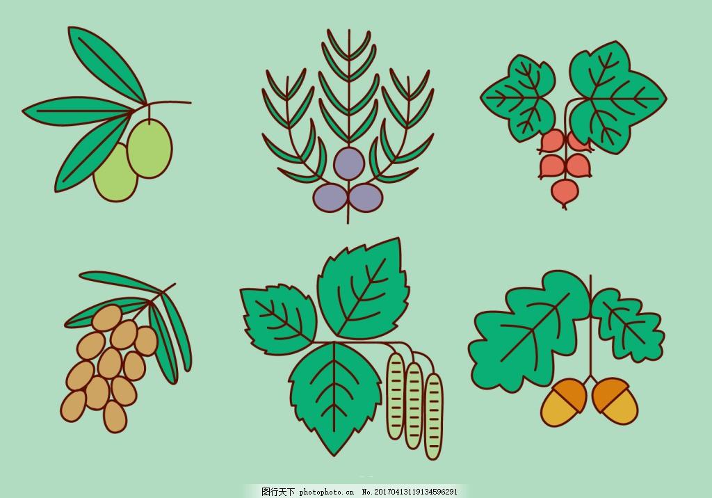 手绘水果植物