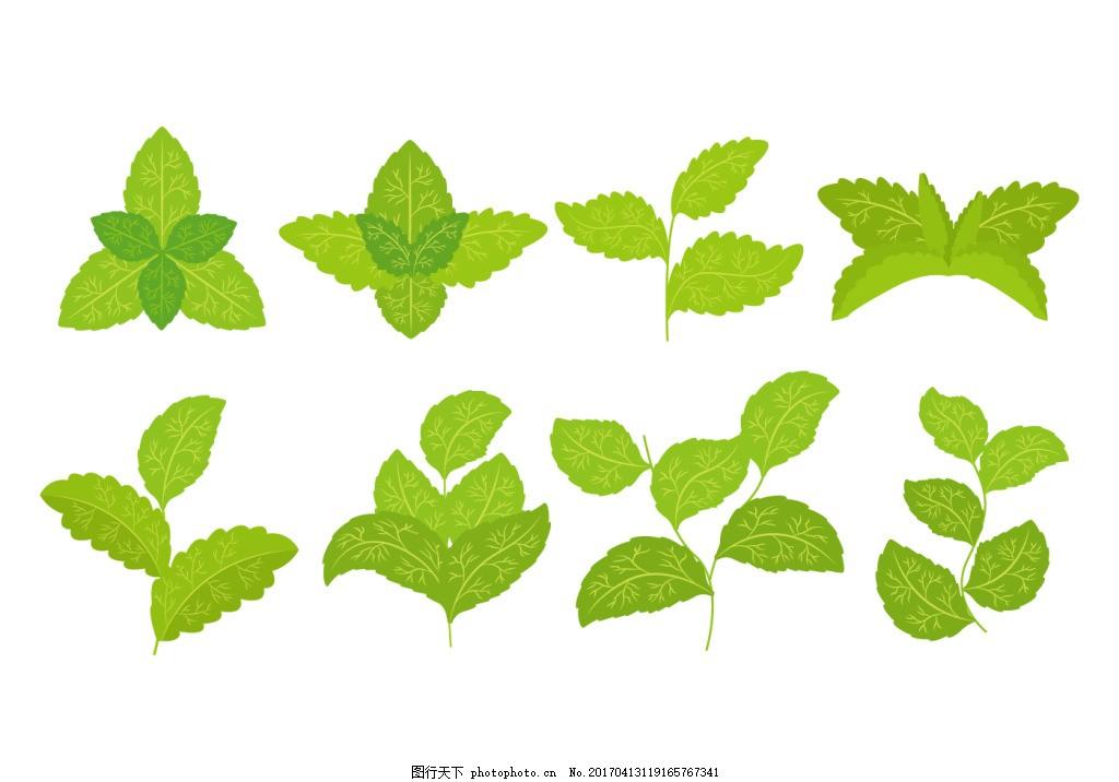 树叶素材 手绘树叶 树叶 矢量素材 手绘叶子 叶子 手绘植物