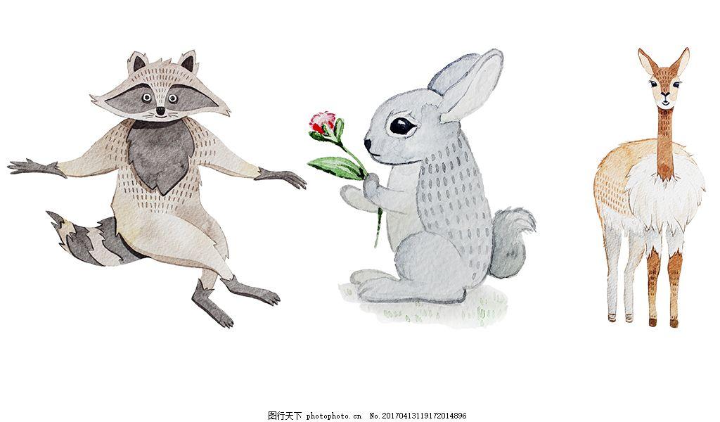可爱手绘彩铅动物素材