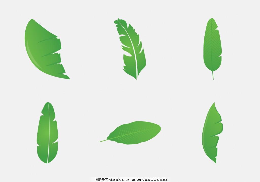 手绘香蕉叶 手绘树叶 手绘叶子 矢量素材 树叶 叶子 手绘植物 扁平