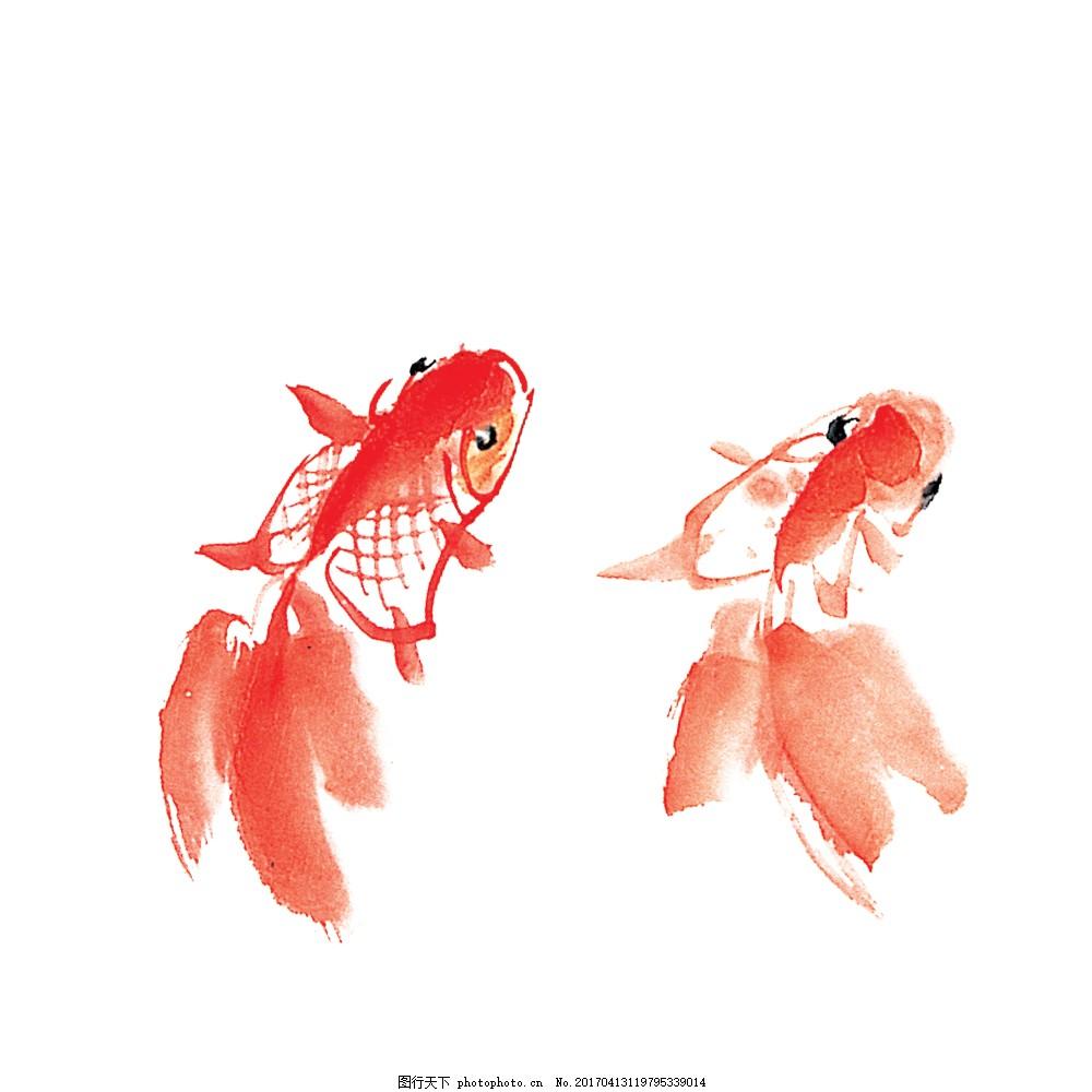 红色金鱼 手绘