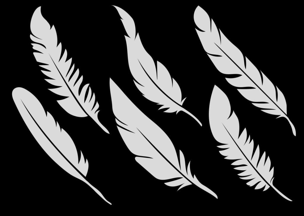 矢量羽毛素材 手绘羽毛 矢量素材