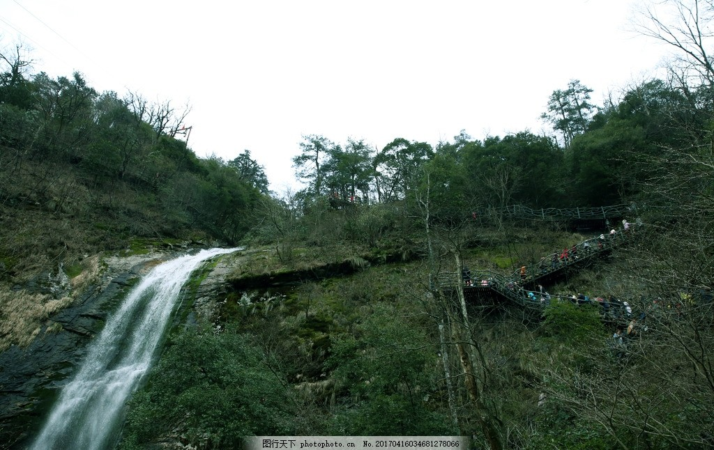 江山 山上风景 山中枯树 枯枝残叶 山水风景 山坡绿化 树木发牙 春天