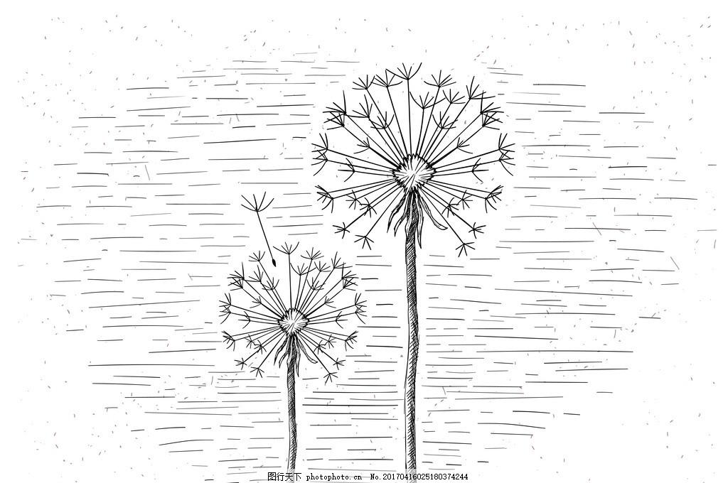 手绘花 花朵 黑白 矢量 花背景