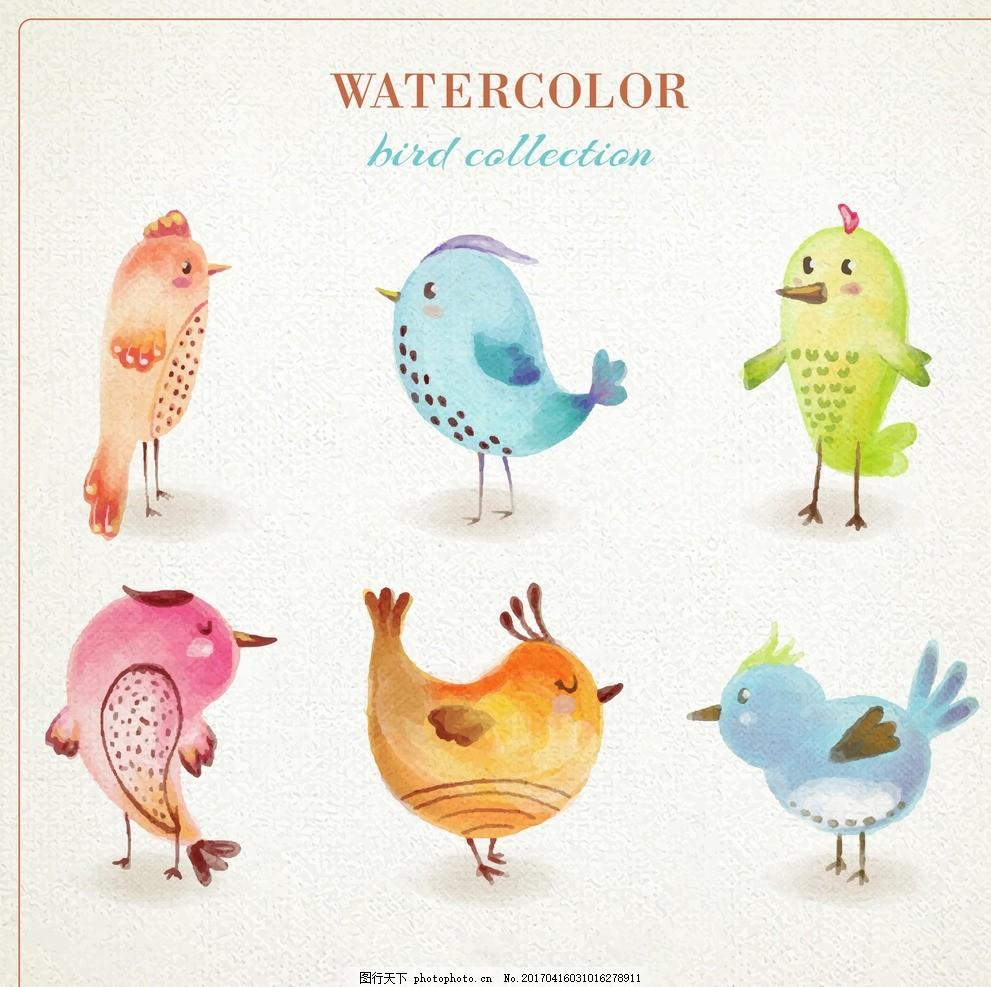 彩色水彩鸟 自然 动物 油漆 翅膀 羽毛 丛林 多彩 动物园 野生