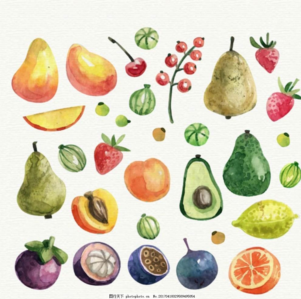 手绘热带水果水彩插图
